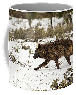 Coffee Mug featuring the photograph W10 by Joshua Able's Wildlife