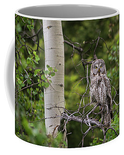 Coffee Mug featuring the photograph B14 by Joshua Able's Wildlife