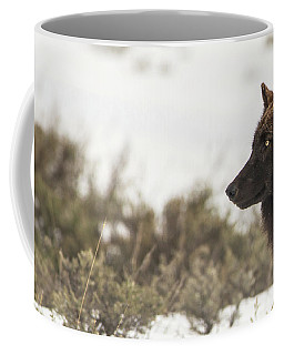 Coffee Mug featuring the photograph W15 by Joshua Able's Wildlife