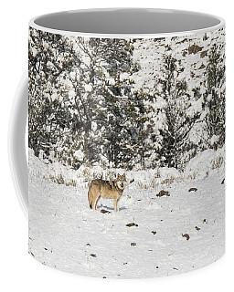 W16 Coffee Mug