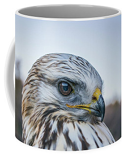 Coffee Mug featuring the photograph B2 by Joshua Able's Wildlife