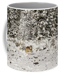 Coffee Mug featuring the photograph W20 by Joshua Able's Wildlife