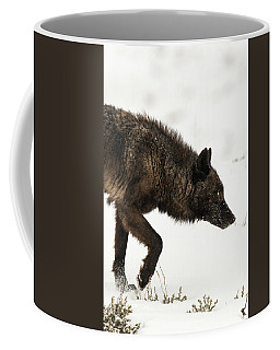 Coffee Mug featuring the photograph W46 by Joshua Able's Wildlife