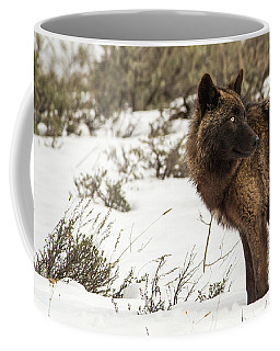 Coffee Mug featuring the photograph W6 by Joshua Able's Wildlife