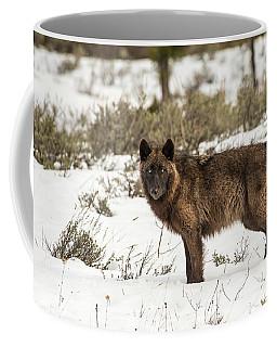 W7 Coffee Mug