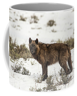 Coffee Mug featuring the photograph W8 by Joshua Able's Wildlife