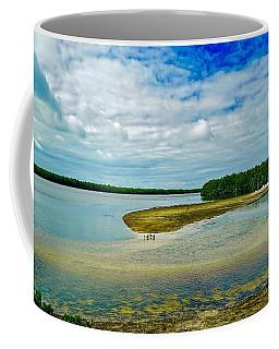 Wildlife Refuge On Sanibel Island Coffee Mug