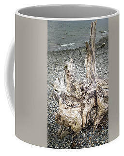 Coffee Mug featuring the photograph Wood Log In Nature No.35 by Juan Contreras