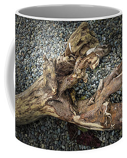 Coffee Mug featuring the photograph Wood Log In Nature No.39 by Juan Contreras