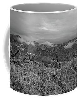 12-26-18 Snow Storm Coffee Mug