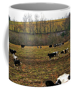 12-30-2005img9716a Coffee Mug