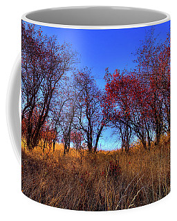 Coffee Mug featuring the photograph Autumn Light by David Patterson