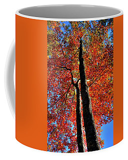 Coffee Mug featuring the photograph Autumn Reds by David Patterson