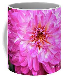 Flowers Hanging No. Hgf10 Coffee Mug