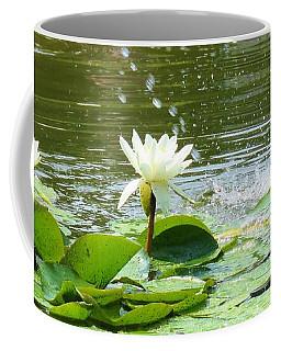 2 White Water Lilies Coffee Mug