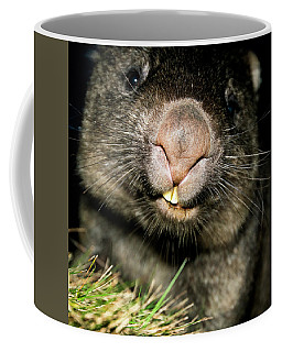 Wombat At Night Coffee Mug