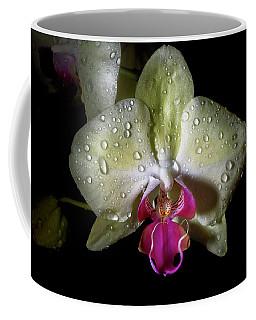 Yellow Phal Coffee Mug