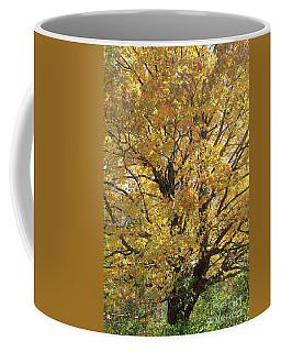 2018 Edna's Tree Up Close Coffee Mug