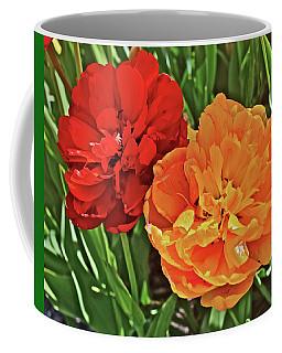 2019 Acewood Double Beauties Coffee Mug