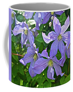 2019 June At The Gardens Prince Charles Clematis Coffee Mug