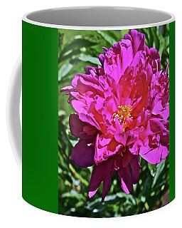 2019 June Neighborhood Flowers Peony Coffee Mug