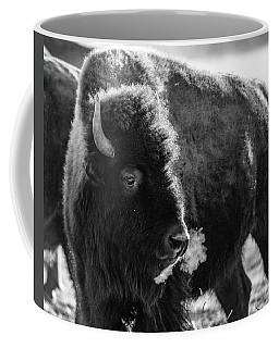 American Bison Coffee Mug