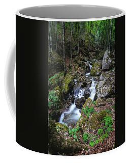 Bela River, Balkan Mountain Coffee Mug