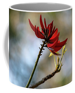 Coral Tree Flowers Coffee Mug