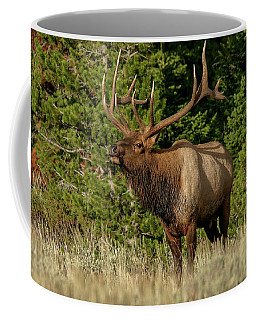 Coffee Mug featuring the photograph Elk by Ronnie and Frances Howard