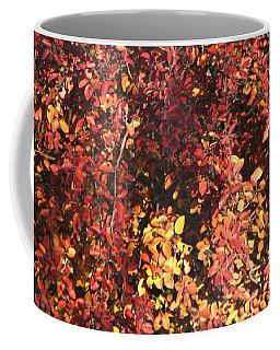 Coffee Mug featuring the photograph Fall Leaves by Ann E Robson