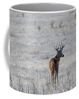 Rocky Mountain Deer Coffee Mug