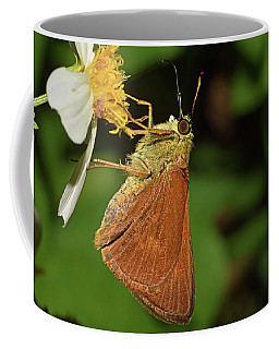 Skipper Butterfly Coffee Mug