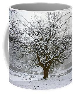 30/01/19  Rivington.  Japanese Pool. Snow Clad Tree. Coffee Mug