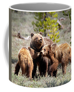 399 And Cubs Coffee Mug