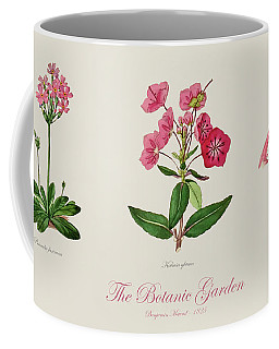 19th Century Botanical Illustrations Of Flowers From The Botanic Garden By Benjamin Maund Coffee Mug