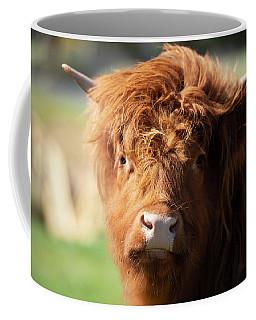 Highland Cow On The Farm Coffee Mug