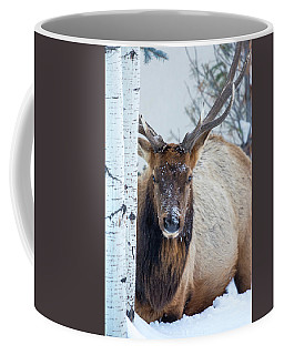 4 Wire Winter  Coffee Mug