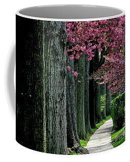5-29-2009l Coffee Mug