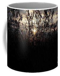 Dusk Coffee Mug