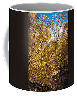 Coffee Mug featuring the photograph Autumnal Park. Autumn Trees And Leaves. Fall by Alex Grichenko