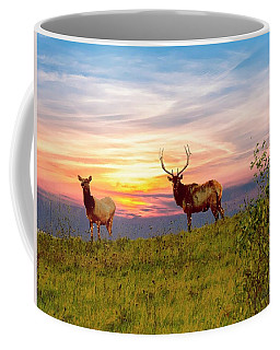 A Cow And Bull Elk Standing On Top Of A Ridge. Coffee Mug