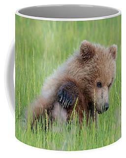 A Coy Cub Coffee Mug