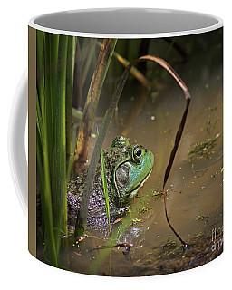 A Frog Waits Coffee Mug