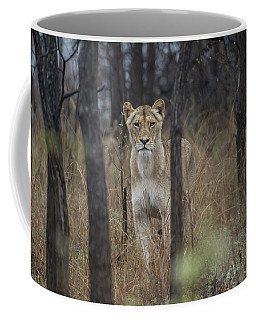 A Lioness In The Trees Coffee Mug