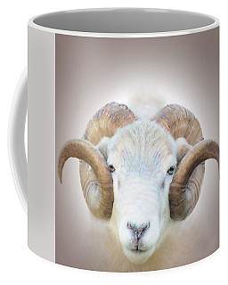 A Little Ram  Coffee Mug