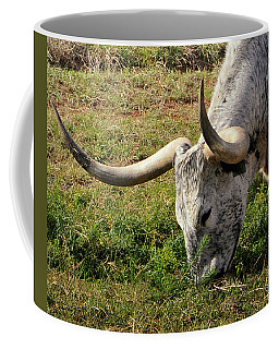 A Longhorn In Wyoming United States Of America Coffee Mug
