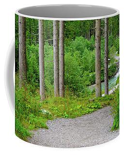 A Path To The River Coffee Mug