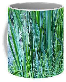Coffee Mug featuring the photograph A Shock Of Green by Rosanne Licciardi