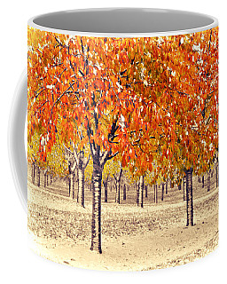 Coffee Mug featuring the photograph A Touch Of Winter by SimplyCMB