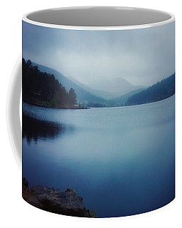 Coffee Mug featuring the photograph A Washed Landscape by Dan Miller